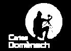 carlesdomenech_300x300